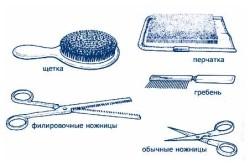 Необходимые инструменты для стрижки