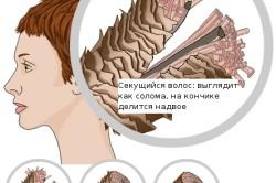 Структура поврежденного волоса
